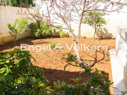 Corner Fully Deatched Villa With Garden