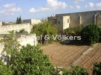 Detached bungalow with 7 tumoli of Land for sale in Zurrieq